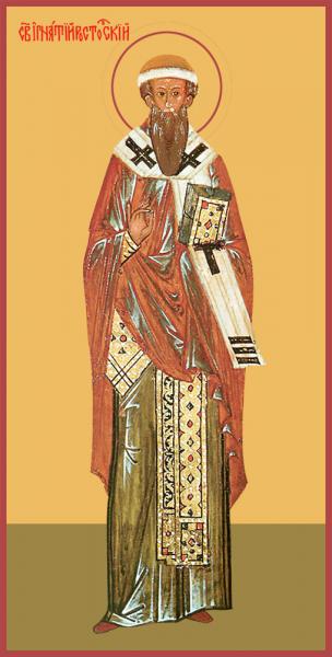 Святитель Игнатий Ростовский, епископ, икона (арт.м0277) - Интернет магазин  ikonaspas.ru