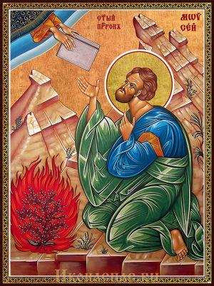 Икона Моисей пророк
