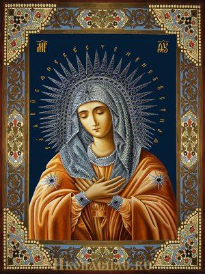 купить икону Умиление Божией МатериДивеевское