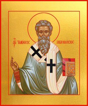 купить икону святого Тимофея Проконесского